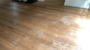 ash floor restoration